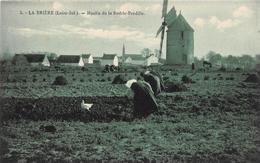 ¤¤  -    SAINT-JOACHIM  -  BRIERE  -  Moulin De La Rodrie - Pendille     -  ¤¤ - Saint-Joachim
