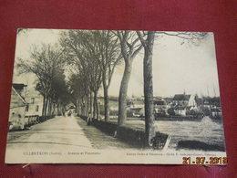CPA - Villentrois - Avenue Et Panorama - France