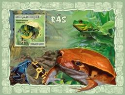 Mozambique 2007 Fauna Frogs - Mozambique
