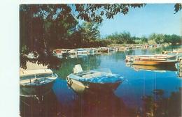Cpsm -   Hyeres Les Palmiers -  Le Port De L 'Aygade    V565a - Hyeres
