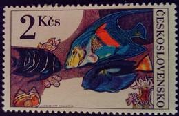 Tchécoslovaquie Czechoslovakia Ceskoslovensko 1975 Animal Poisson Fish Yvert 2109 ** MNH - Ungebraucht