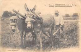 86-MIREBEAU- ANES DU MIREBALAIS- ATTELES EN GUIMPE- ATTELAGE PRESQUE TOTALEMENT DISPARU - Mirebeau