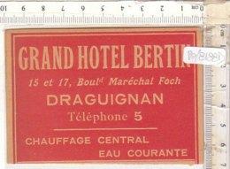 PO8188D# ETICHETTA - ADESIVI ALBERGHI - GRAND HOTEL BERTIN - DRAGUIGNAN FRANCIA - Adesivi Di Alberghi