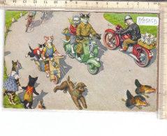 PO8585D# ILLUSTRATORI MAX KUNZLI - GATTI UMANIZZATI - DRESSED CATS - MOTO VESPA  VG 1962 - Humor