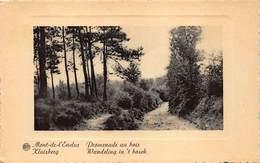 Kluisbergen  Mont De L'Ecluse  Wandeling In Het Bos  Promenade Au Bois   L 149 - Kluisbergen