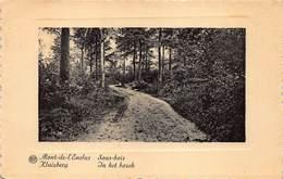 Kluisbergen  Mont De L'Ecluse  Sous Bois   In Het Bos    L 150 - Kluisbergen