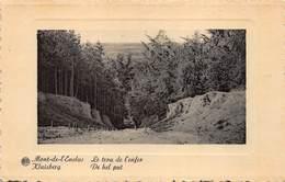 Kluisbergen  Mont De L'Ecluse   De Hel Put ,  Le Trou De L'enfer     L 153 - Kluisbergen