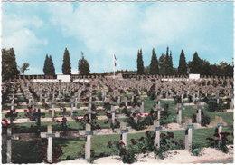 54. Gf. BADONVILLER. Cimetière Militaire. 5 - France