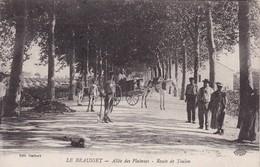 83 / LE BEAUSSET / ALLEE DES PLATANES / ROUTE DE TOULON / CANTONNIERS / ATTELAGE / - Le Beausset