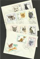 POLOGNE - POLSKA / Série 1332/41 / Lot 4 Enveloppes FDC Oblitérations Illustrées Concordantes 30.04.1964 - Chats Domestiques