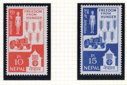 1963 - NEPAL  -  Mi. Nr.  168/169 - NH - (CW4755.44) - Nepal