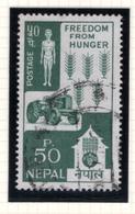 1963 - NEPAL  -  Mi. Nr.  170 - USED - (CW4755.44) - Nepal