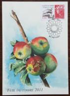 CM 2011 - YT N°4534 - FETE DU TIMBRE / PROTEGEONS LA TERRE - FEYTIAT - Cartoline Maximum