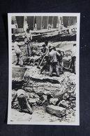MILITARIA - Carte Postale - Guerre De 1939/45 - Camp De Concentration De Sachsenhausen - L 36311 - Weltkrieg 1939-45
