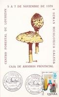1979 SPAIN SPECIAL CARD- CENTRO FORESTAL DE LOURIZAN 1 SEMAN MICOLOXOGICA GALEGA. CAJA DE AHORRAO PROVINCIAL- BLEUP - 1931-Aujourd'hui: II. République - ....Juan Carlos I