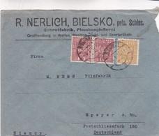 1955 POLAND COMMERCIAL COVER-R.NERLICH BIELSKO. CIRCULEE TO GERMANY - BLEUP - 1944-.... République
