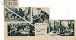 VILVOORDE..1934.. KERMIS EN JAARMARKT - Vieux Papiers
