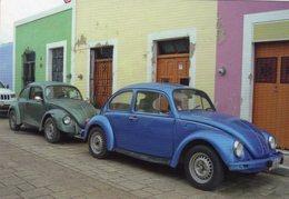 Volkswagen Beetle/Coccinelle In Campeche, Mexico  -  CPM - Voitures De Tourisme