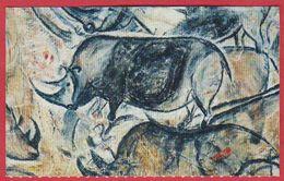 Caverne Du Pont D'Arc. Grotte Chauvet. Visuel Panneau Des Rhinocéros. 2019. - Tickets D'entrée