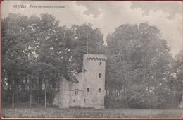 Herzele Ruine De L' Ancien Chateau Kasteel Burcht ZELDZAAM (vochtschade ? Zie Beschrijving) - Herzele