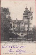 Watermaal-Bosvoorde - Watermael-Boitsfort Le Chateau De Charles Albert A (vlekjes) - Watermaal-Bosvoorde - Watermael-Boitsfort