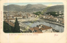 06.  NICE . Le Port Avec L'Observatoire Et Les Alpes Maritimes . - Nice
