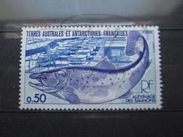 VEND BEAU TIMBRE DES T.A.A.F. N° 71 , XX !!! (a) - Unused Stamps