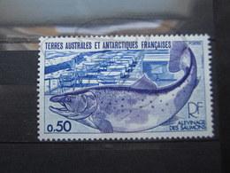 VEND BEAU TIMBRE DES T.A.A.F. N° 71 , XX !!! (b) - Unused Stamps