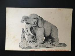 Animales Prehistoricos - Animales