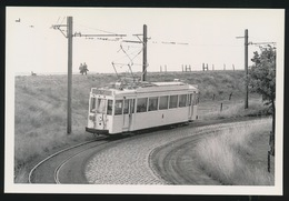 LILOO  HAVEN      - LIMITED EDITION 200 EX  1960  - 2 SCANS - Tram