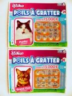 2 Lottery Ticket Animal Cat Cats - Billetes De Lotería