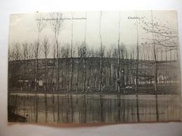 Carte Postale Chablis (89) Vue Panoramique Des Côtes Grenouilles ( Petit Format Oblitérée 1907 Timbre 5 Centimes ) - Chablis