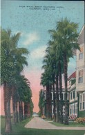 POSTAL MISSISSIPPI - MS - GULFPORT - PALM WALK - GREAT SOUTHERN HOTEL - ESTADOS UNIDOS - Estados Unidos