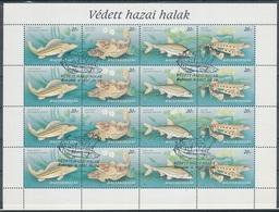 1997. Protected Native Fish Full Sheet - Ungarn