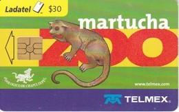 TARJETA DE MEXICO DE UNA MARTUCHA (ZOO) - Sin Clasificación