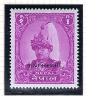 1960 - NEPAL  -  Mi. Nr.  Taxe 12 - NH - (CW4755.43) - Nepal