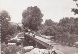 Gard        H347        Goudargues.La Passerelle Sur La Cèze - Autres Communes