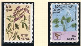 1980 - NEPAL  -  Mi. Nr.  393/394 - USED - (CW4755.43) - Nepal