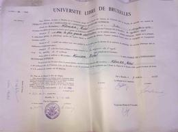 Diplôme Université Libre De  Bruxelles 1964Belgique. - Diplômes & Bulletins Scolaires
