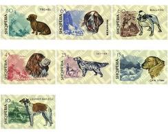 Ref. 78157 * MNH * - ALBANIA. 1966. PEDIGREE DOGS . PERROS DE RAZA - Hunde