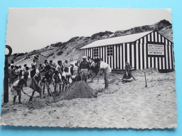 Hof Ter DUIN Zeedijk 55 Wenduyne / Vacantieoord Der Beroepsmutualiteiten Antw ( Thill ) Anno 1963 ( Zie/voir Foto 's ) ! - Wenduine
