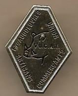 Pin's Doré Escaudoeuvres (59) Union Des Commerçants Artisans U.C.A.E. Sanglier - Villes