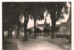 La Chatre  - Jardin De La Mairie - CPSM° - La Chatre