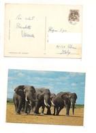 M9036 AFRICA UGANDA STAMP 1971 ELEFANTI CARD MARK - Uganda (1962-...)