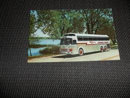 Voiture ( 65 )    Car  Automobile  Auto  Autobus  Autocar  Bus  :  The NEW SILVER EAGLE - Buses & Coaches