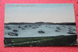 Scotland Orkney The Home Fleet Scapa Flow 1910 - Otros