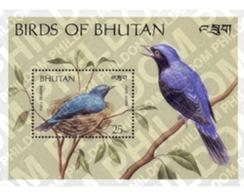 Ref. 292736 * MNH * - BHUTAN. 1989. BIRDS . AVES - Bhután