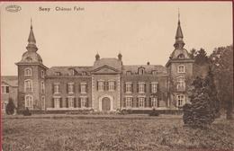 Seny Chateau Fabri Condroz Tinlot CPA (En Très Bon Etat) - Tinlot