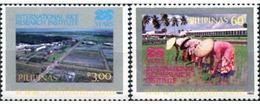 Ref. 313355 * MNH * - PHILIPPINES. 1985. INSTITUTO INTERNACIONAL DEL DESARROLLO - Agriculture