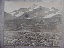 WILDSPITZE VOM OBEREN 3774 M PHOTO ARGENTIQUE GEBRUDER BACHRENDT MERANO 1908 CACHET 26 X 20 - Plaatsen
